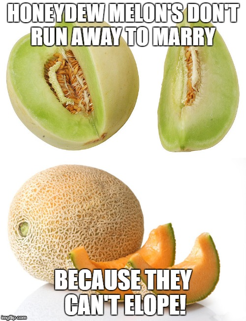 HONEYDEW MELON'S DON'T RUN AWAY TO MARRY BECAUSE THEY CAN'T ELOPE! | image tagged in dad jokes,melons,elope | made w/ Imgflip meme maker