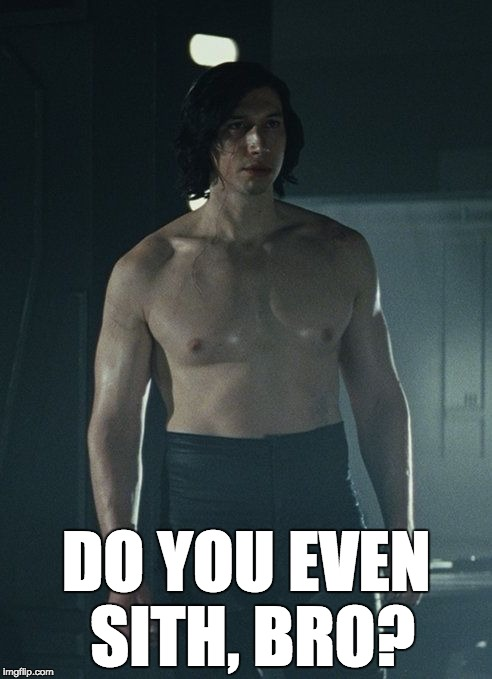 kyloJacked | DO YOU EVEN SITH, BRO? | image tagged in kylojacked | made w/ Imgflip meme maker