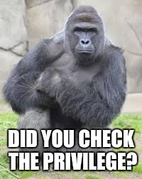 DID YOU CHECK THE PRIVILEGE? | made w/ Imgflip meme maker