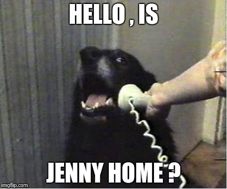 It's for you | HELLO , IS JENNY HOME ? | image tagged in it's for you | made w/ Imgflip meme maker