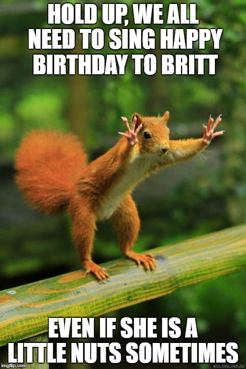Wait a Minute Squirrel | HOLD UP, WE ALL NEED TO SING HAPPY BIRTHDAY TO BRITT EVEN IF SHE IS A LITTLE NUTS SOMETIMES | image tagged in wait a minute squirrel | made w/ Imgflip meme maker