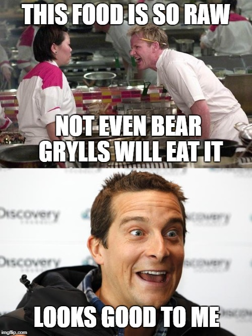What will a Bear eat? | THIS FOOD IS SO RAW NOT EVEN BEAR GRYLLS WILL EAT IT LOOKS GOOD TO ME | image tagged in bear grylls,chef gordon ramsay | made w/ Imgflip meme maker