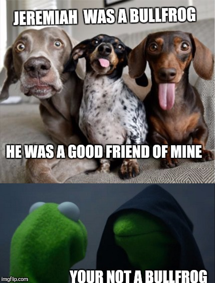 Music week March 5-11..............  Joy To The World | JEREMIAH  WAS A BULLFROG YOUR NOT A BULLFROG HE WAS A GOOD FRIEND OF MINE | image tagged in evil kermit,music week,meme,funny,70's,dogs | made w/ Imgflip meme maker