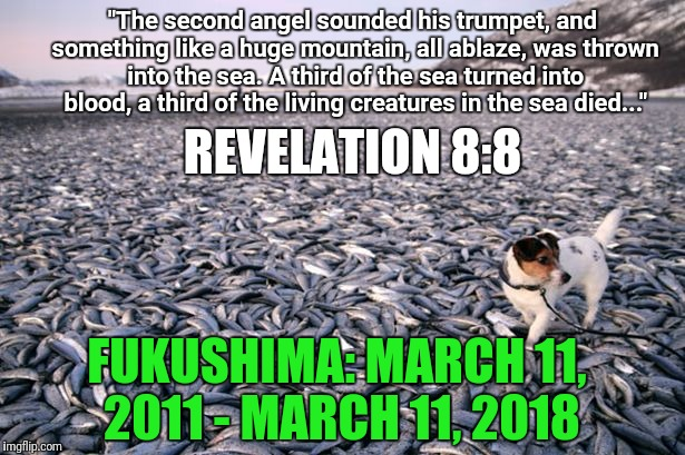 "Lest we forget: 400 tons of radioactive water pour into the Pacific every day | ""The second angel sounded his trumpet, and something like a huge mountain, all ablaze, was thrown into the sea. A third of the sea turned in 