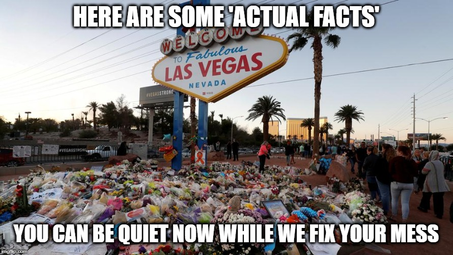 Too Many Guns | HERE ARE SOME 'ACTUAL FACTS' YOU CAN BE QUIET NOW WHILE WE FIX YOUR MESS | image tagged in too many guns | made w/ Imgflip meme maker