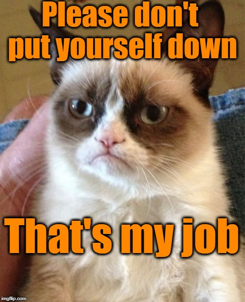 Grumpy Cat Meme | Please don't put yourself down That's my job | image tagged in memes,grumpy cat | made w/ Imgflip meme maker