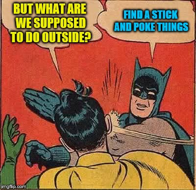 Batman Slapping Robin Meme | BUT WHAT ARE WE SUPPOSED TO DO OUTSIDE? FIND A STICK AND POKE THINGS | image tagged in memes,batman slapping robin | made w/ Imgflip meme maker