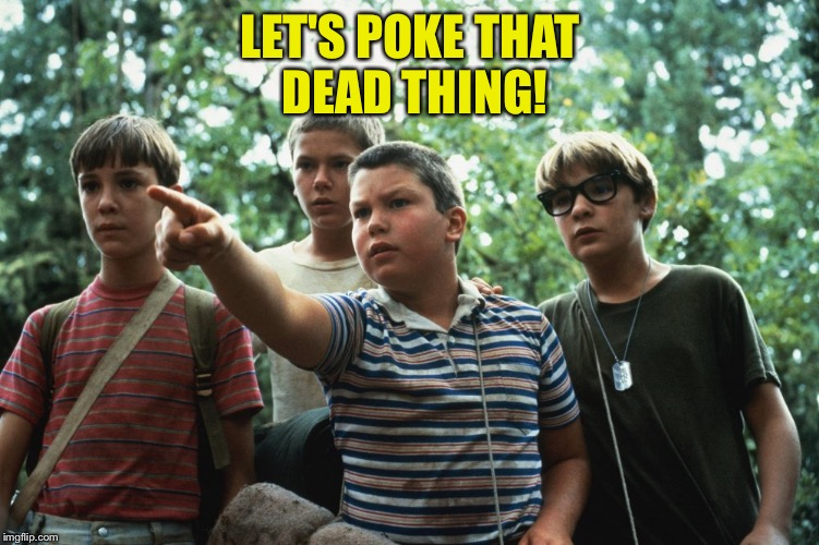 LET'S POKE THAT DEAD THING! | made w/ Imgflip meme maker