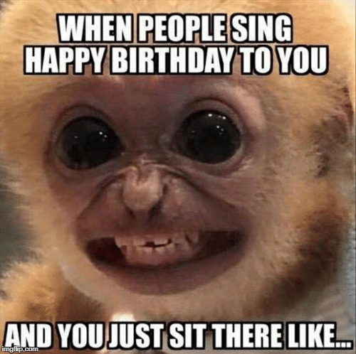 Thats true... very much true | image tagged in moneky,birthday | made w/ Imgflip meme maker