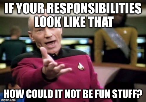 Picard Wtf Meme | IF YOUR RESPONSIBILITIES LOOK LIKE THAT HOW COULD IT NOT BE FUN STUFF? | image tagged in memes,picard wtf | made w/ Imgflip meme maker