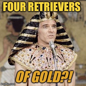 FOUR RETRIEVERS OF GOLD?! | made w/ Imgflip meme maker