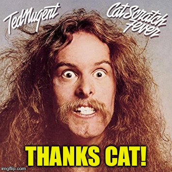 THANKS CAT! | made w/ Imgflip meme maker