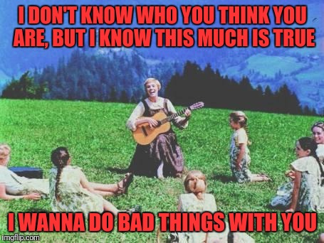 I DON'T KNOW WHO YOU THINK YOU ARE, BUT I KNOW THIS MUCH IS TRUE I WANNA DO BAD THINGS WITH YOU | image tagged in sound of music | made w/ Imgflip meme maker
