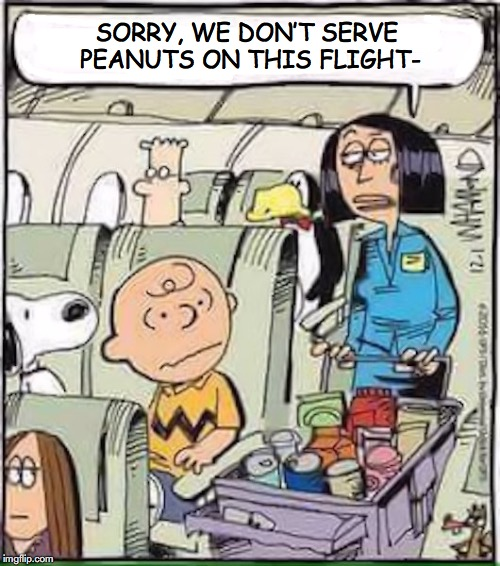 Going Nuts | SORRY, WE DON'T SERVE PEANUTS ON THIS FLIGHT- | image tagged in peanuts,airlines,snacks,discrimination,flight attendant | made w/ Imgflip meme maker
