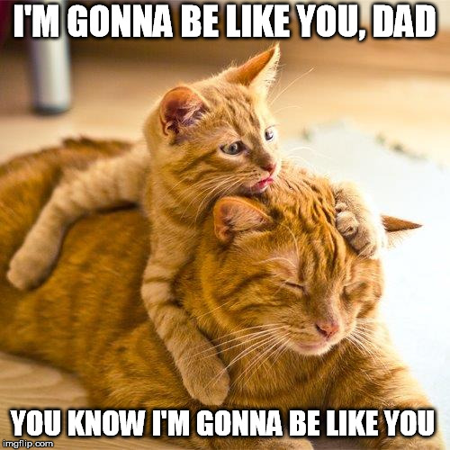 I'M GONNA BE LIKE YOU, DAD YOU KNOW I'M GONNA BE LIKE YOU | made w/ Imgflip meme maker