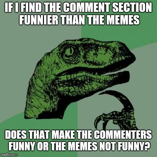 Philosoraptor Meme | IF I FIND THE COMMENT SECTION FUNNIER THAN THE MEMES DOES THAT MAKE THE COMMENTERS FUNNY OR THE MEMES NOT FUNNY? | image tagged in memes,philosoraptor | made w/ Imgflip meme maker