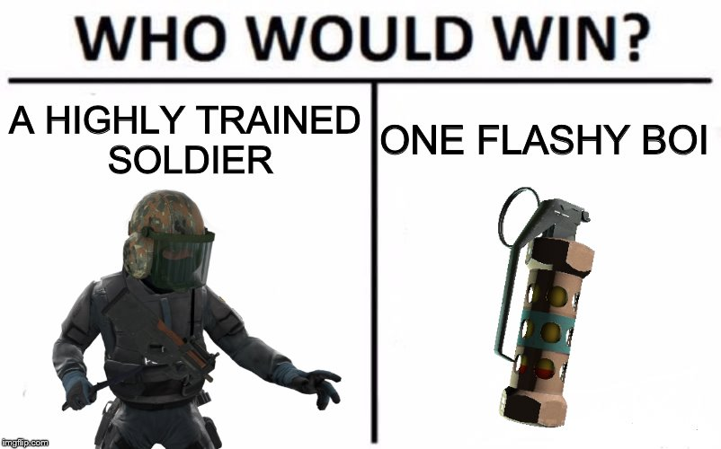 who would win | A HIGHLY TRAINED SOLDIER ONE FLASHY BOI | image tagged in counter strike | made w/ Imgflip meme maker