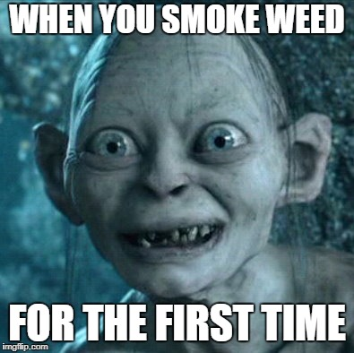 Gollum Meme | WHEN YOU SMOKE WEED FOR THE FIRST TIME | image tagged in memes,gollum | made w/ Imgflip meme maker