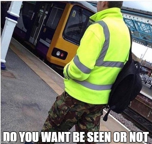 pick something | DO YOU WANT BE SEEN OR NOT | image tagged in memes,funny,ssby | made w/ Imgflip meme maker