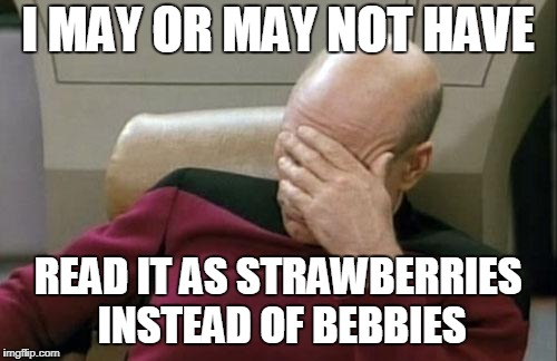 Captain Picard Facepalm Meme | I MAY OR MAY NOT HAVE READ IT AS STRAWBERRIES INSTEAD OF BEBBIES | image tagged in memes,captain picard facepalm | made w/ Imgflip meme maker