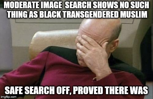 Captain Picard Facepalm Meme | MODERATE IMAGE  SEARCH SHOWS NO SUCH THING AS BLACK TRANSGENDERED MUSLIM SAFE SEARCH OFF, PROVED THERE WAS | image tagged in memes,captain picard facepalm | made w/ Imgflip meme maker