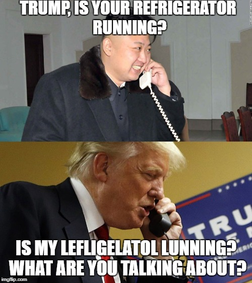 Kim Jon Un prank calling Trump | TRUMP, IS YOUR REFRIGERATOR RUNNING? IS MY LEFLIGELATOL LUNNING? WHAT ARE YOU TALKING ABOUT? | image tagged in kim jong un,donald trump,prank,funny meme | made w/ Imgflip meme maker