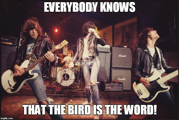 EVERYBODY KNOWS THAT THE BIRD IS THE WORD! | made w/ Imgflip meme maker