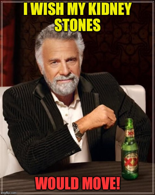 The Most Interesting Man In The World Meme | I WISH MY KIDNEY STONES WOULD MOVE! | image tagged in memes,the most interesting man in the world | made w/ Imgflip meme maker
