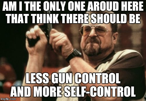 Am I The Only One Around Here Meme | AM I THE ONLY ONE AROUD HERE THAT THINK THERE SHOULD BE LESS GUN CONTROL AND MORE SELF-CONTROL | image tagged in memes,am i the only one around here | made w/ Imgflip meme maker