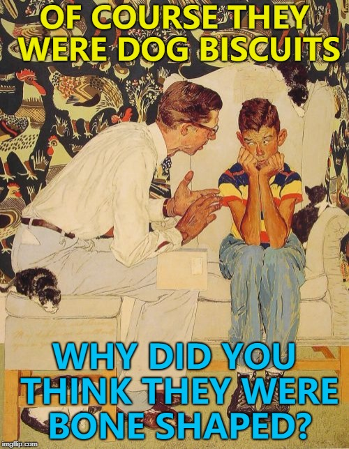 I suspect he's feeling ruff... :) | OF COURSE THEY WERE DOG BISCUITS WHY DID YOU THINK THEY WERE BONE SHAPED? | image tagged in memes,the probelm is,the problem is,dog biscuits,animals,dogs | made w/ Imgflip meme maker