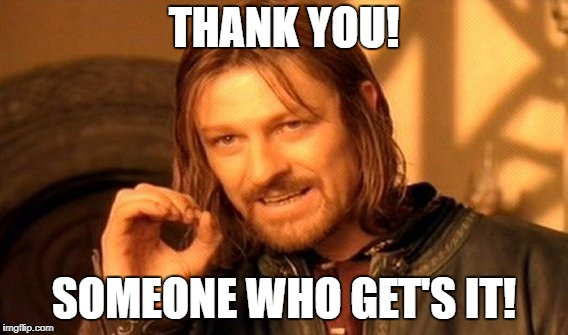 One Does Not Simply Meme | THANK YOU! SOMEONE WHO GET'S IT! | image tagged in memes,one does not simply | made w/ Imgflip meme maker