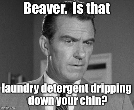 Deleted scenes from 1957's Leave it to Beaver | Beaver.  Is that laundry detergent dripping down your chin? | image tagged in not happy ward cleaver,beaver,tide,pods,dripping,chin | made w/ Imgflip meme maker