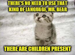 THERE'S NO NEED TO USE THAT KIND OF LANGUAGE, MR. BEAR THERE ARE CHILDREN PRESENT | made w/ Imgflip meme maker