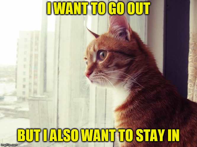 I WANT TO GO OUT BUT I ALSO WANT TO STAY IN | made w/ Imgflip meme maker