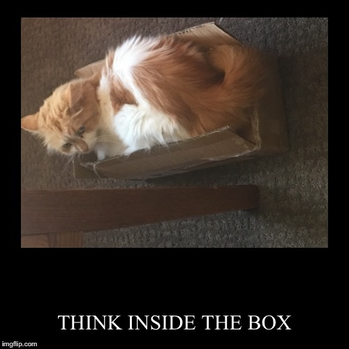 THINK INSIDE THE BOX | image tagged in funny,demotivationals | made w/ Imgflip demotivational maker