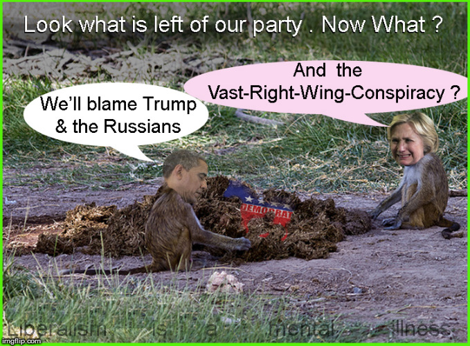What is left of the DNC | image tagged in dnc,democrats,hillary in jail,politics lol,current events,barack obama | made w/ Imgflip meme maker