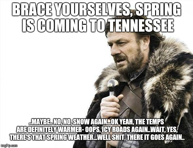 Brace Yourselves X is Coming Meme | BRACE YOURSELVES, SPRING IS COMING TO TENNESSEE ..MAYBE.. NO, NO, SNOW AGAIN...OK YEAH, THE TEMPS ARE DEFINITELY WARMER- OOPS, ICY ROADS AGA | image tagged in memes,brace yourselves x is coming | made w/ Imgflip meme maker