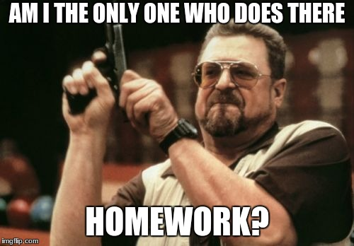 Am I The Only One Around Here Meme | AM I THE ONLY ONE WHO DOES THERE HOMEWORK? | image tagged in memes,am i the only one around here | made w/ Imgflip meme maker