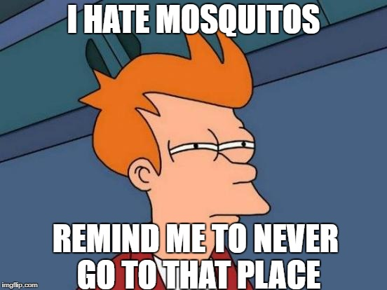 Futurama Fry Meme | I HATE MOSQUITOS REMIND ME TO NEVER GO TO THAT PLACE | image tagged in memes,futurama fry | made w/ Imgflip meme maker