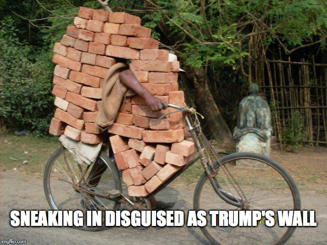 SNEAKING IN DISGUISED AS TRUMP'S WALL | image tagged in trump wall,mexico,daca,funny | made w/ Imgflip meme maker