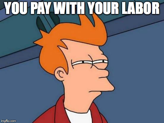 Futurama Fry Meme | YOU PAY WITH YOUR LABOR | image tagged in memes,futurama fry | made w/ Imgflip meme maker