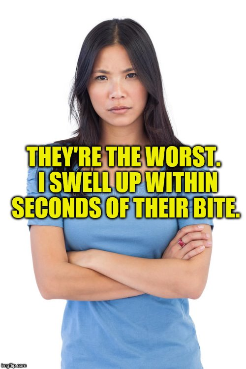 THEY'RE THE WORST.  I SWELL UP WITHIN SECONDS OF THEIR BITE. | made w/ Imgflip meme maker