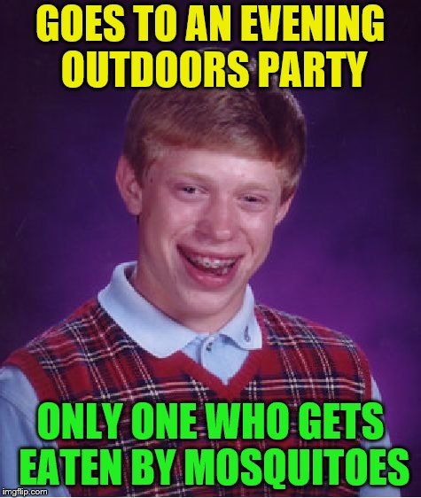 Bad Luck Brian Meme | GOES TO AN EVENING OUTDOORS PARTY ONLY ONE WHO GETS EATEN BY MOSQUITOES | image tagged in memes,bad luck brian | made w/ Imgflip meme maker