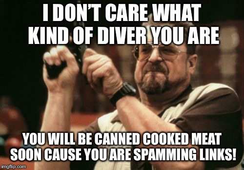 Insult each other week March 11-17 | I DON'T CARE WHAT KIND OF DIVER YOU ARE YOU WILL BE CANNED COOKED MEAT SOON CAUSE YOU ARE SPAMMING LINKS! | image tagged in memes,am i the only one around here,insult week | made w/ Imgflip meme maker