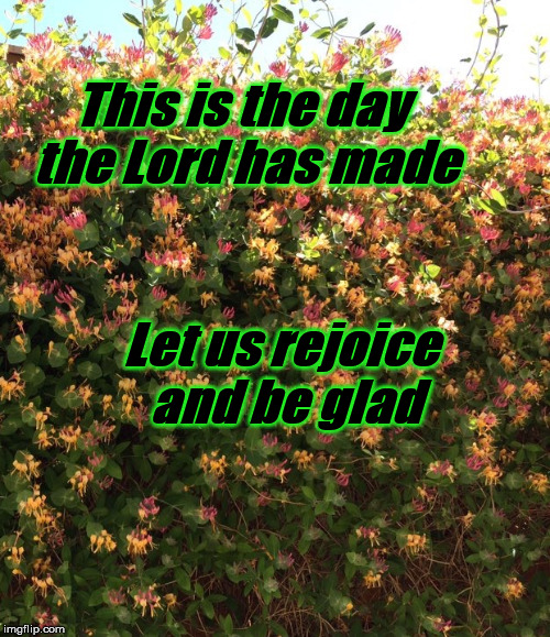 This is the day | This is the day the Lord has made Let us rejoice and be glad | image tagged in scripture | made w/ Imgflip meme maker