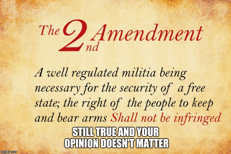 STILL TRUE AND YOUR OPINION DOESN'T MATTER | image tagged in 2nd amendment | made w/ Imgflip meme maker