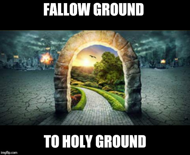 FALLOW GROUND TO HOLY GROUND | image tagged in original meme | made w/ Imgflip meme maker