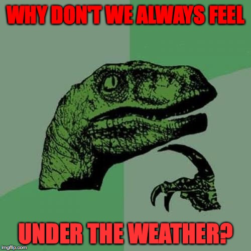 I'm feeling it right now.  ) : | WHY DON'T WE ALWAYS FEEL UNDER THE WEATHER? | image tagged in memes,philosoraptor | made w/ Imgflip meme maker