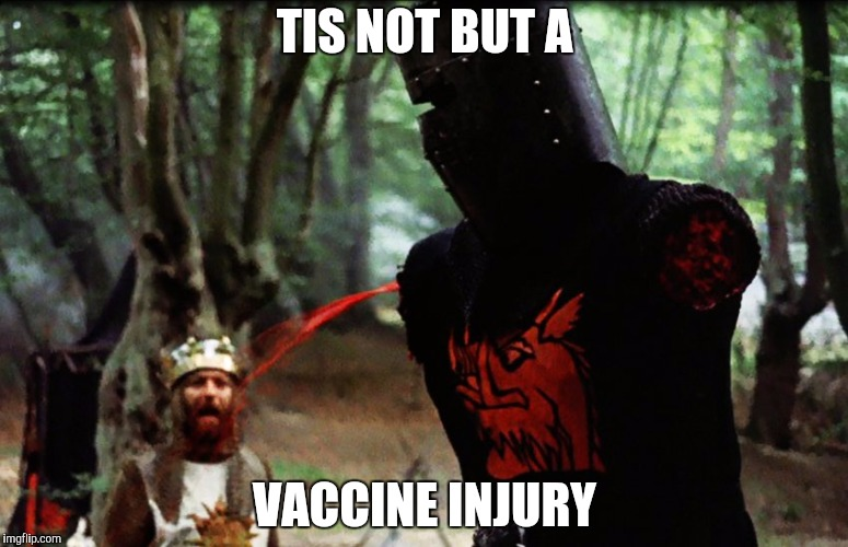 Monty Python Black Knight | TIS NOT BUT A VACCINE INJURY | image tagged in monty python black knight | made w/ Imgflip meme maker