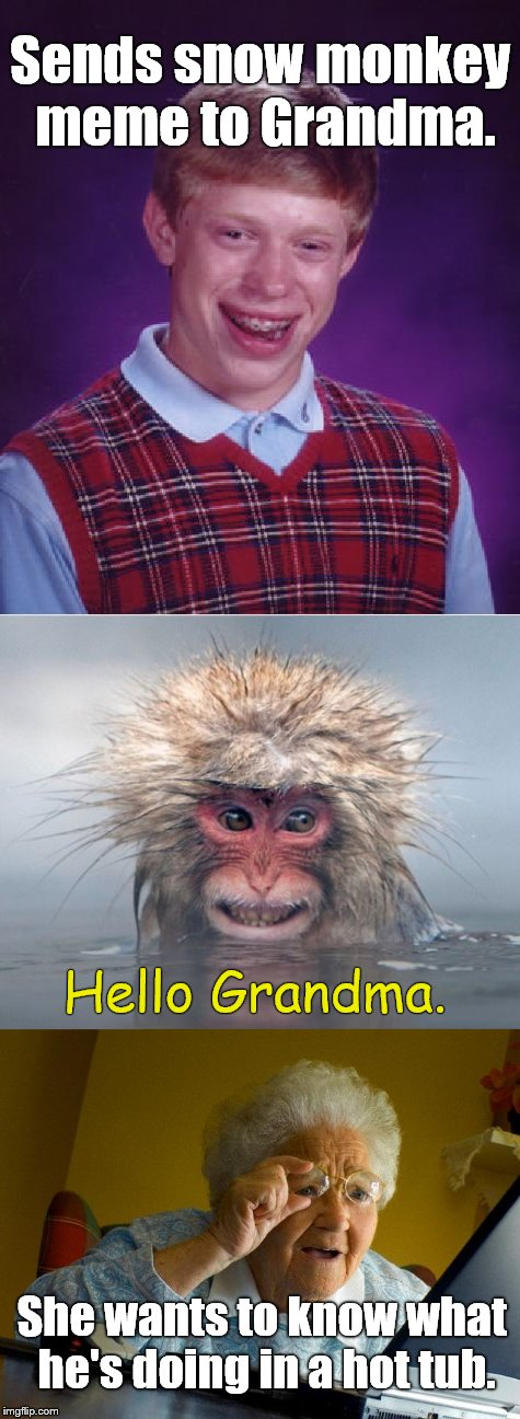 Storytelling at its best! | Sends snow monkey meme to Grandma. She wants to know what he's doing in a hot tub. Hello Grandma. | image tagged in bad luck brian,snow monkey,grandma finds the internet,storytelling,first world problems,douglie | made w/ Imgflip meme maker